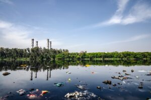 Garbage and Pollution at the Lakeside